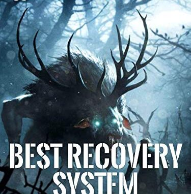 Best Recovery System